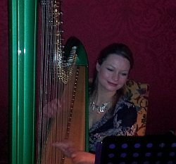 Eleanor Turner - internationally renowned harpist entertains at the Timico management dinner