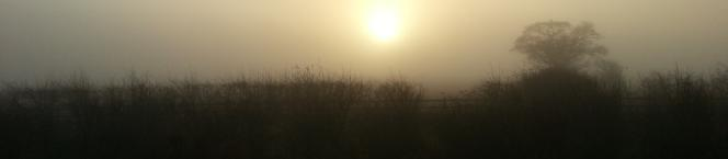early morning sun in December in Lincolnshire