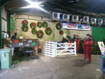 Christmas tree barn at Fillingham Trees