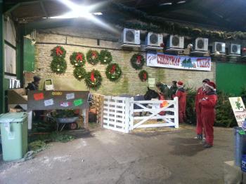 Christmas tree barn at Fillingham Trees