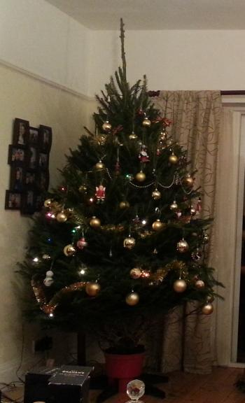 Xmas tree from Fillingham