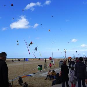 Kites and Kites and Kites!