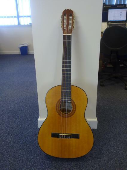 the Timico NetOps guitar