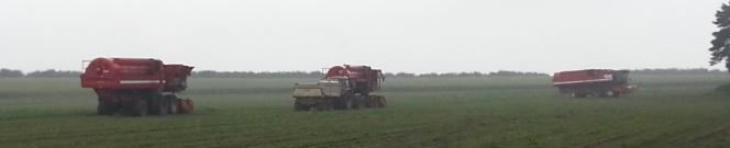 3 pea viners in action with attendant tractor and hopper in fields near Manton in Lincolnshire