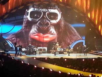 rolling stones gorilla - you know it makes sense