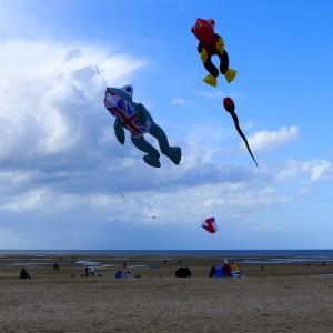 Brit Kite In the Running
