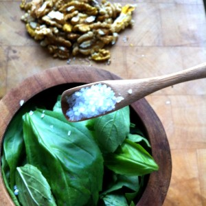 4. Place your basil into your mortar, and add a 1/2 teaspoon of coarse sea salt (for taste, of course, and to aid in the grinding).