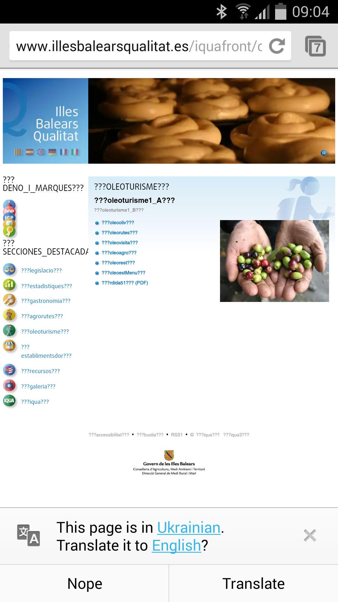 Ukrainian google translate